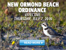 Ormond Beach Ordinance Effective July 2016