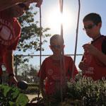 OSP Community Gardening
