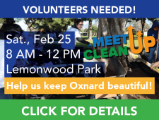 MeetupCleanup-Lemonwood-01
