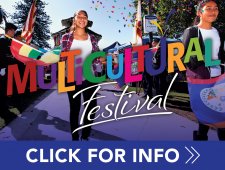 Multicultural Festival-2017